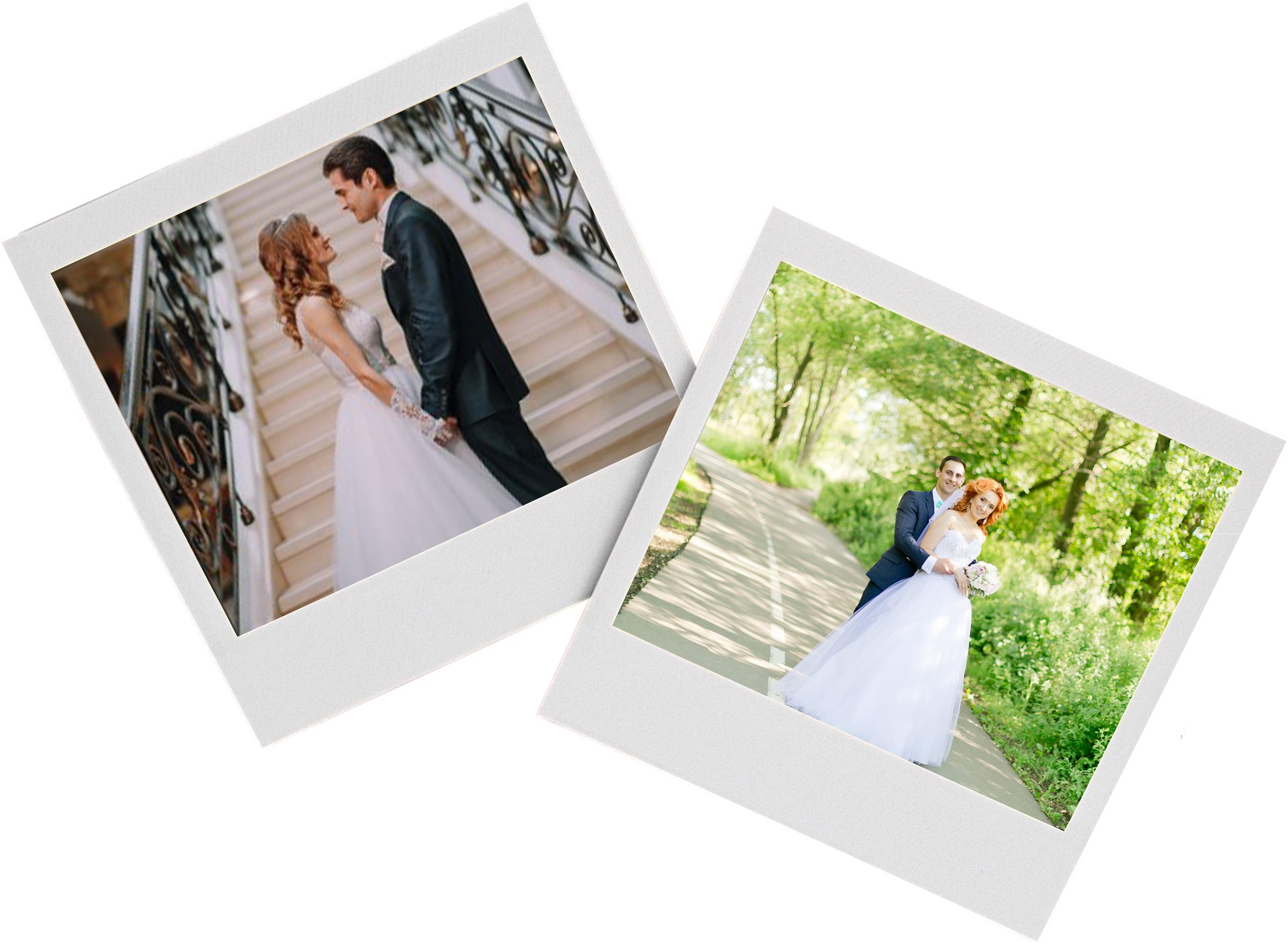 свадебные фотографы димитровграда